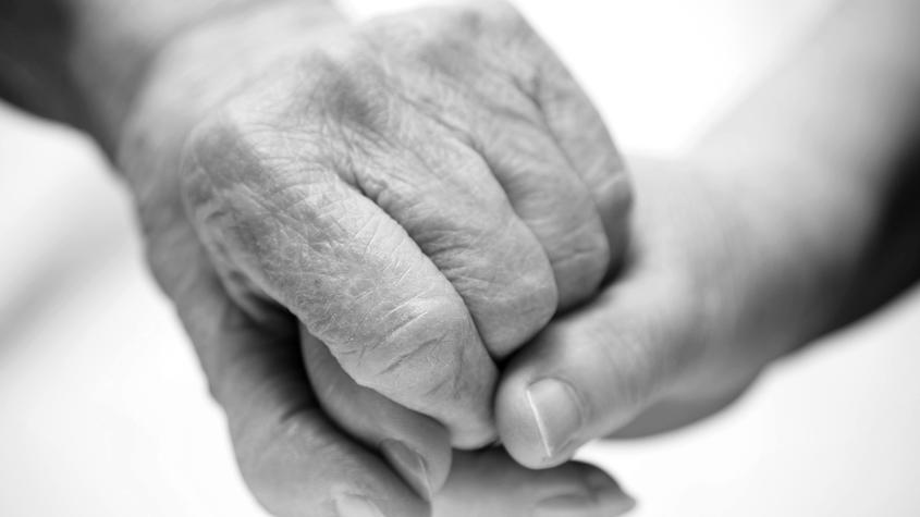 Volunteers Bring End-of-Life Comfort